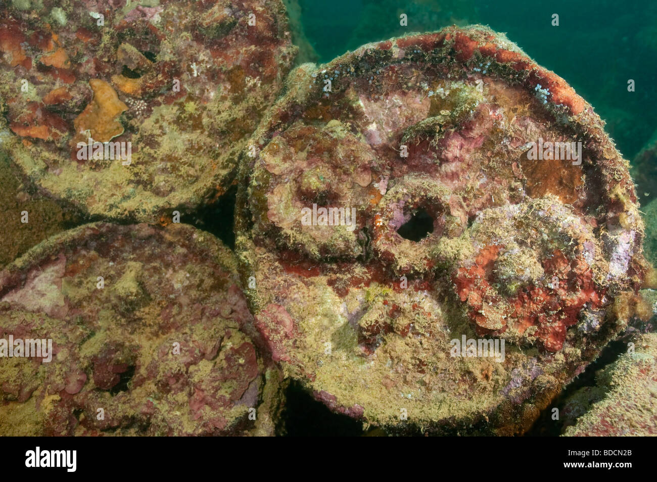 Depth Charges from World War II on the Helmet Wreck in Palau. - Stock Image