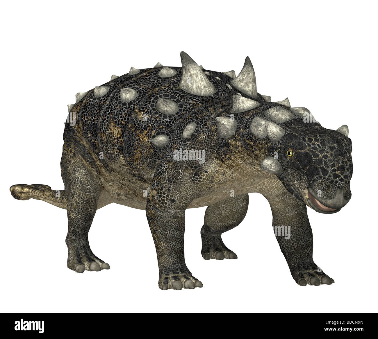 dinosaur euoplocephalus Stock Photo