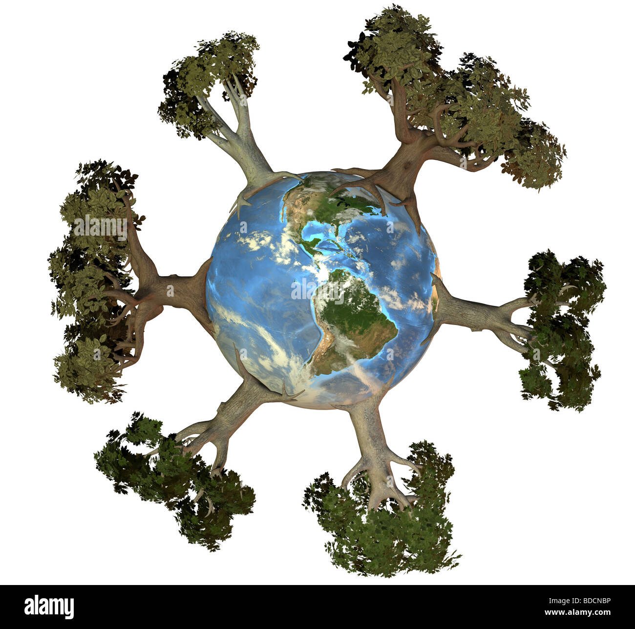 Earth with trees america Stock Photo