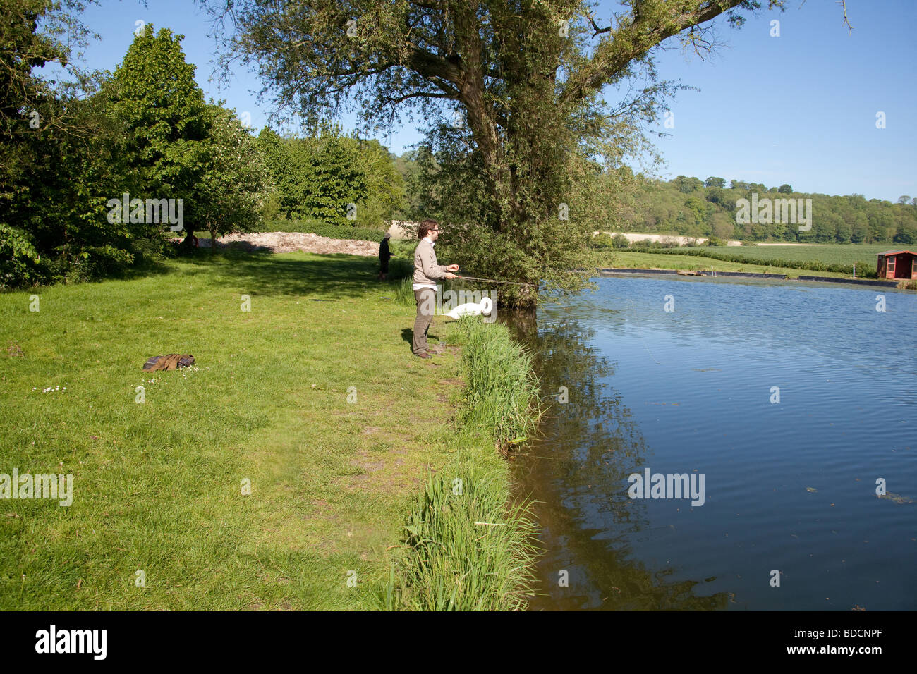 Fly Fisherman at Meon Springs Trout Fishery, Hampshire , England. - Stock Image