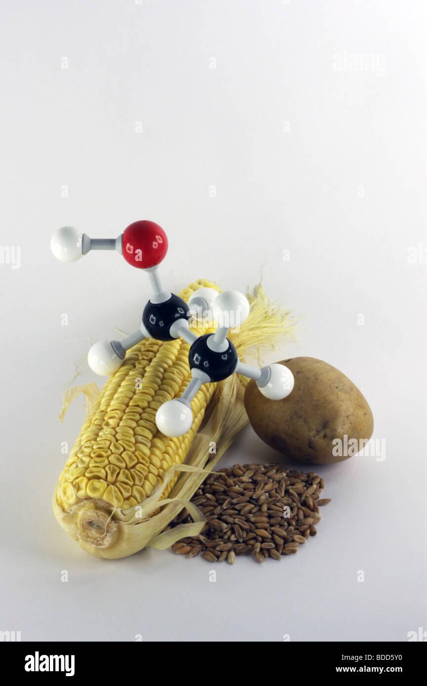energie plants for bio fuel Stock Photo