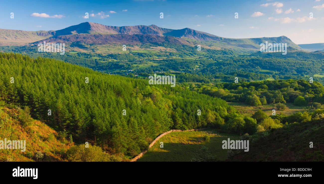 Cadair Idris and the Mawddach Estuary from the Precipice Walk nr Dolgellau Gwynedd Wales - Stock Image