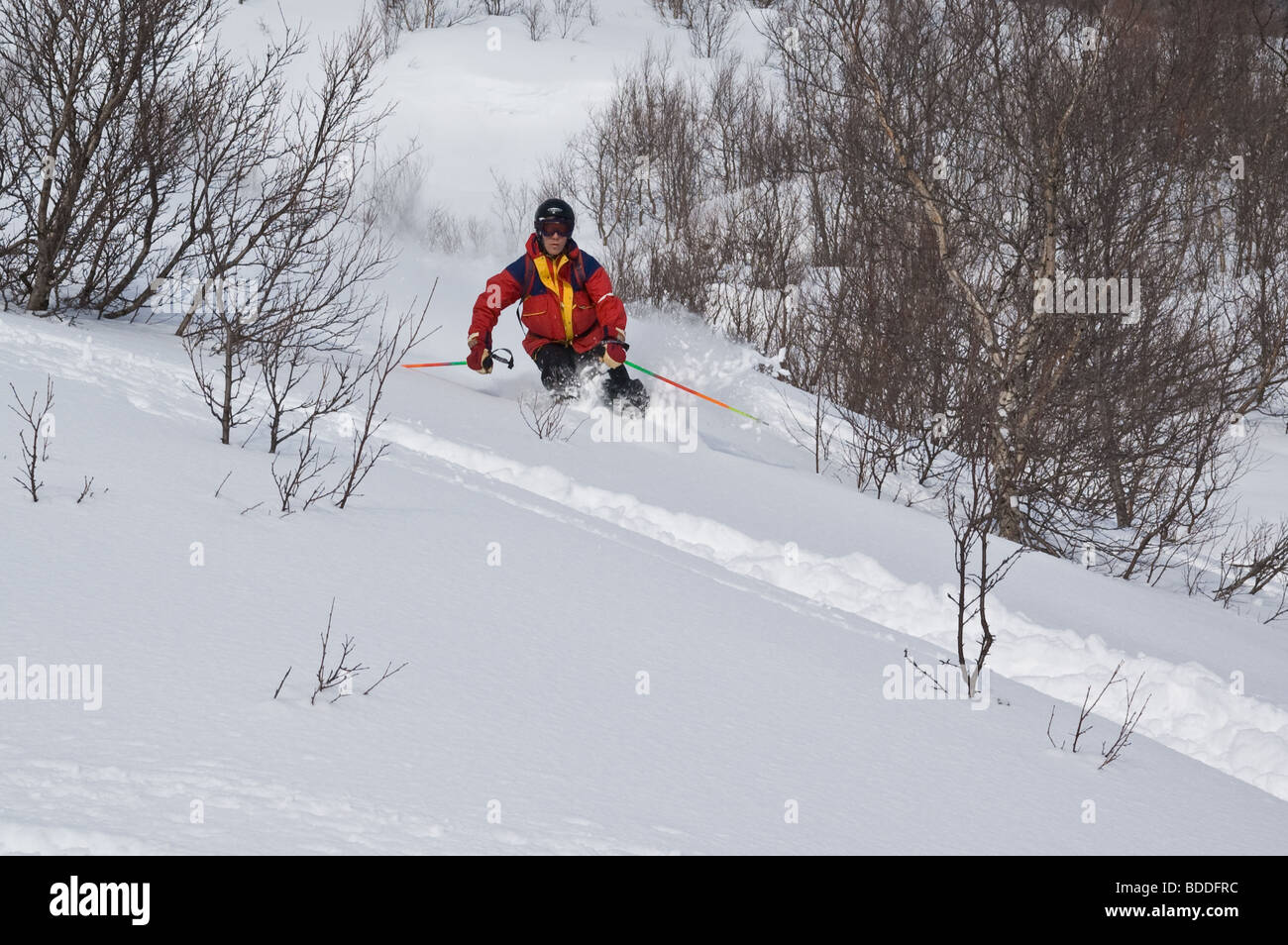 Back-country skiing in northern Sweden.  Nuolja, Abisko, Lappland, Sweden. - Stock Image