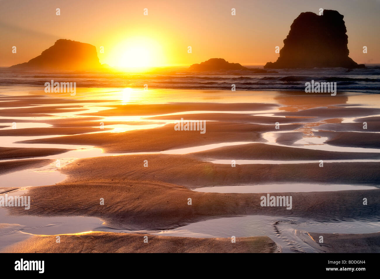 Sunset with low tide reflecting pools.Samuel H. Boardman State Scenic Corridor. Oregon Stock Photo