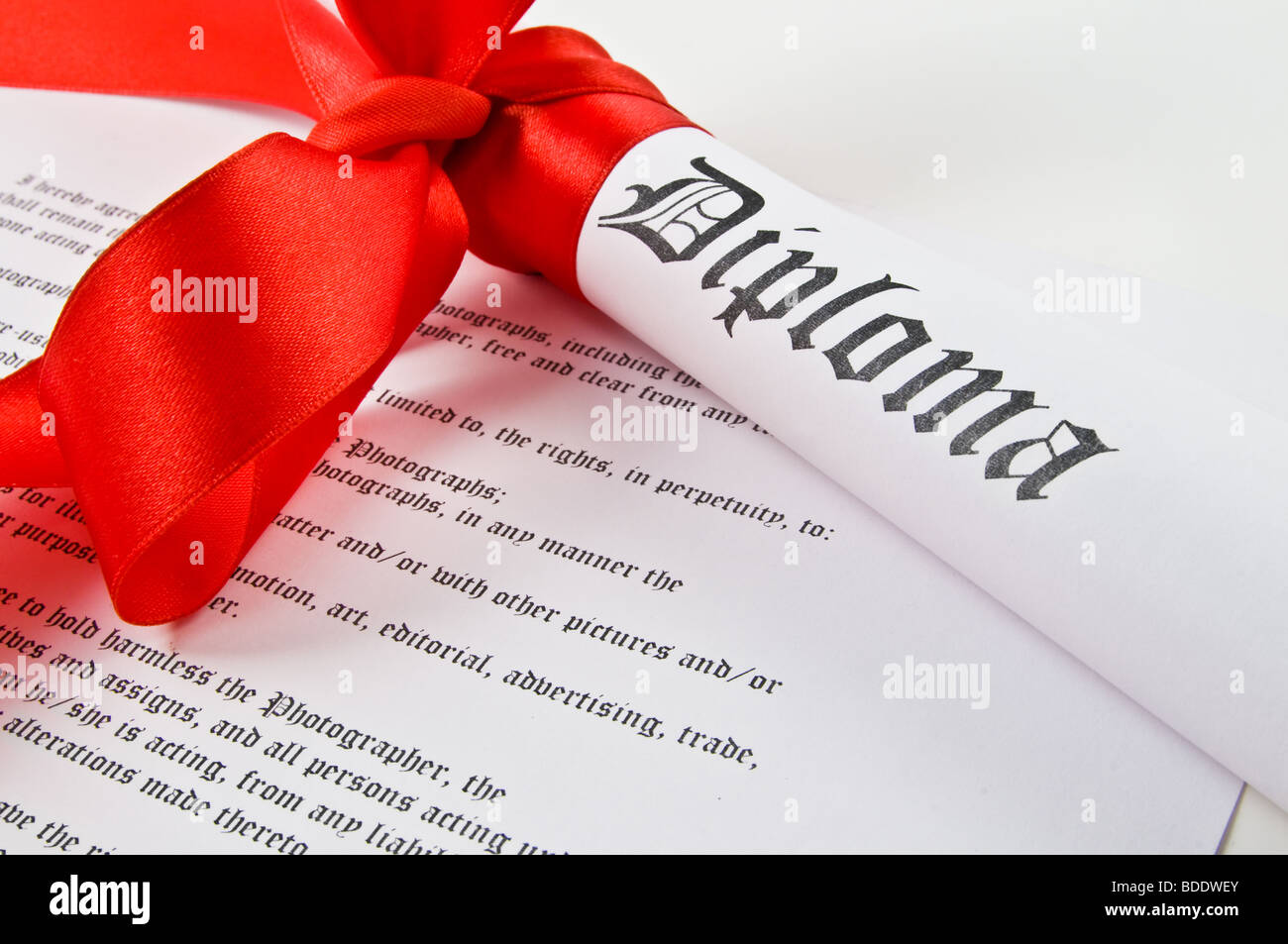 Diploma with red ribbon on white background - Stock Image
