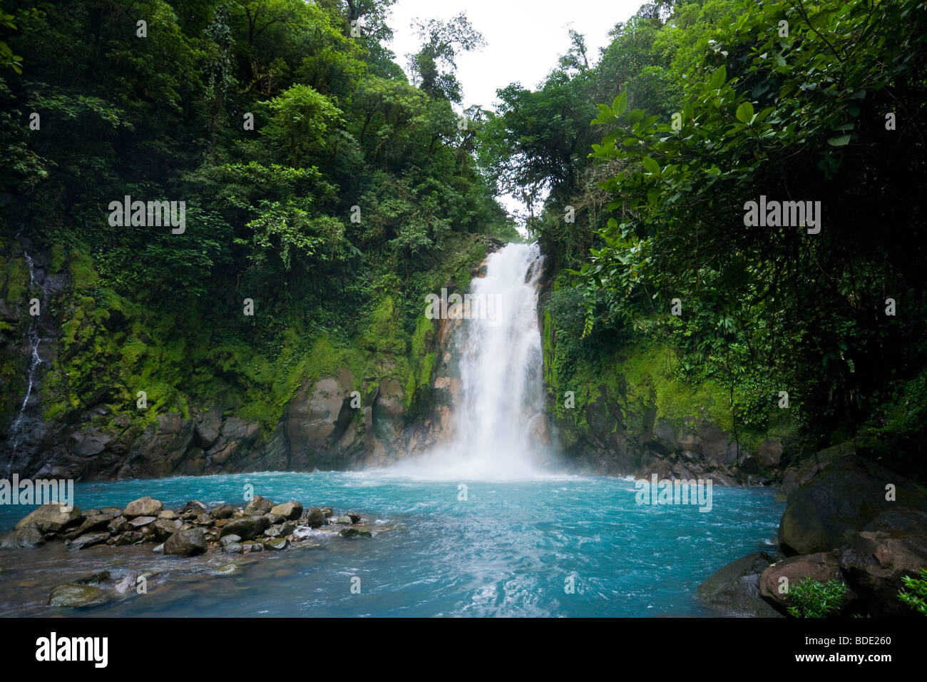 Rain forest waterfall along the vibrant blue Rio Celeste river in Tenorio Volcano National Park, Costa Rica. - Stock Image