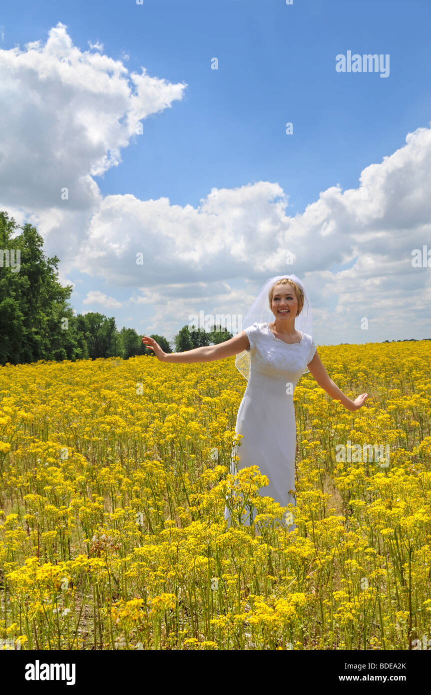 Beautiful bride in a field of yellow flowers during sunny day - Stock Image