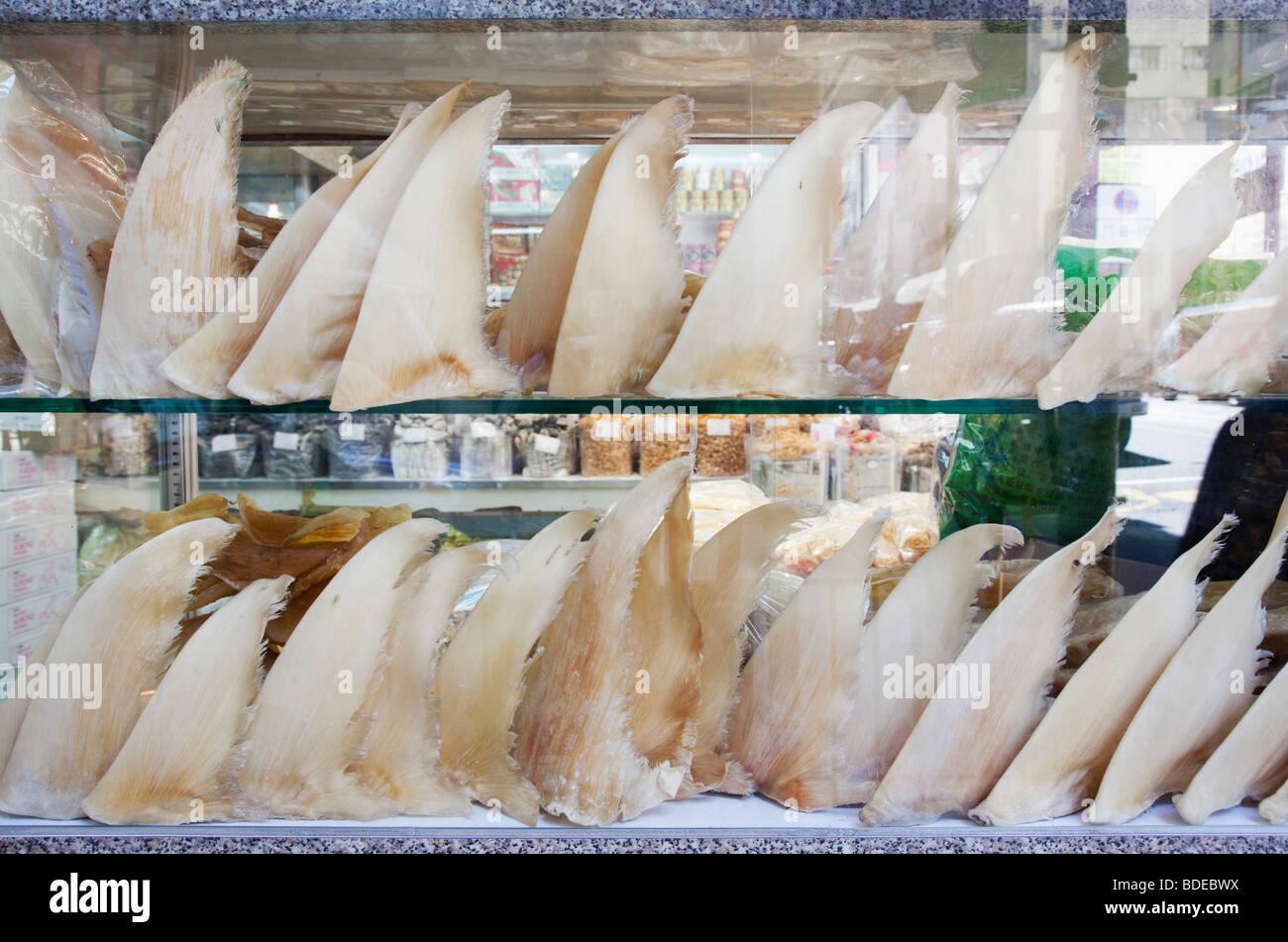 Shark fins on sale medicinal and herb district, Bonham Strand, Sheung Wan, Hong Kong, China. - Stock Image