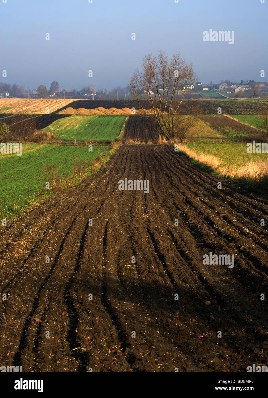 Lesser Poland agriculture - Stock Image