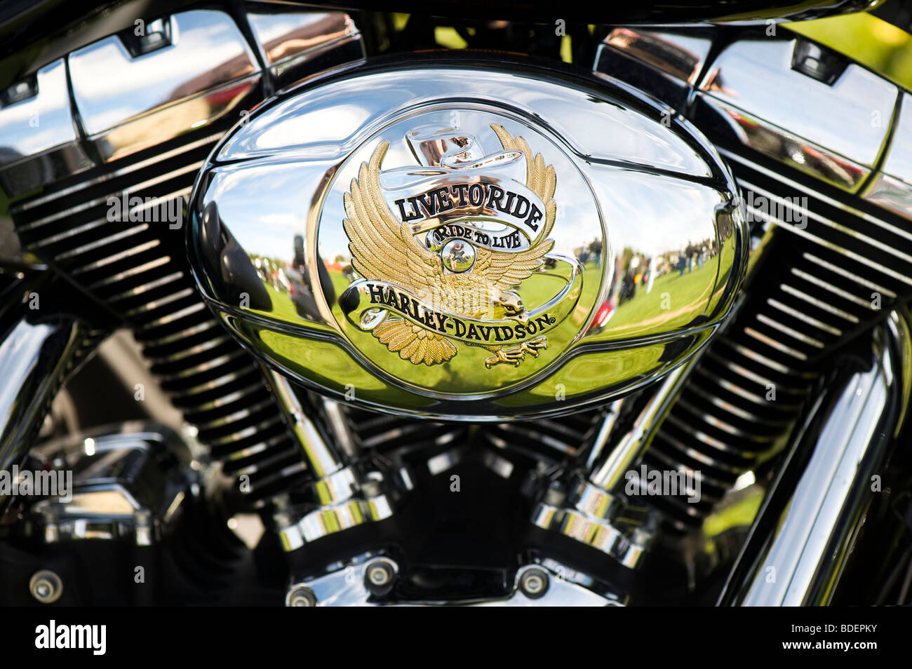 Harley Davidson motorcycle v-twin engine with 'live to ride' custom