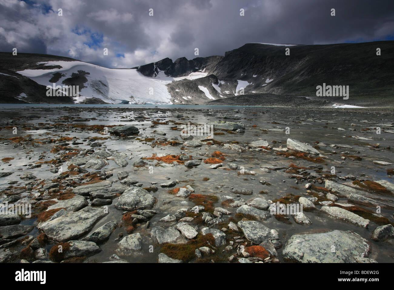 Rocky terrain under the mountain Snøhetta, 2286 m, in Dovrefjell national park, Norway. - Stock Image