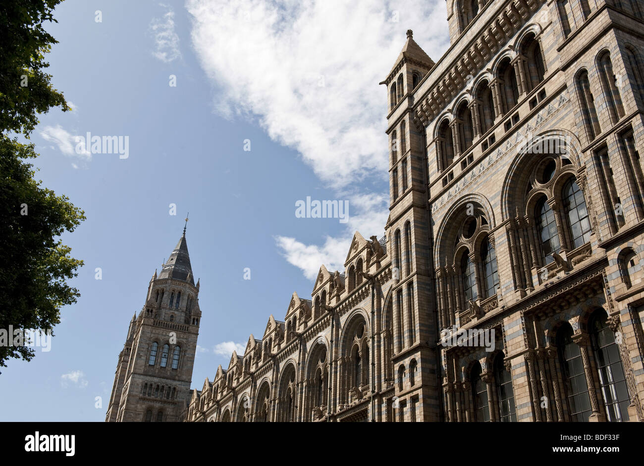 Section of the architectural stone detailing on the external facade of The Natural History Museum, London against Stock Photo