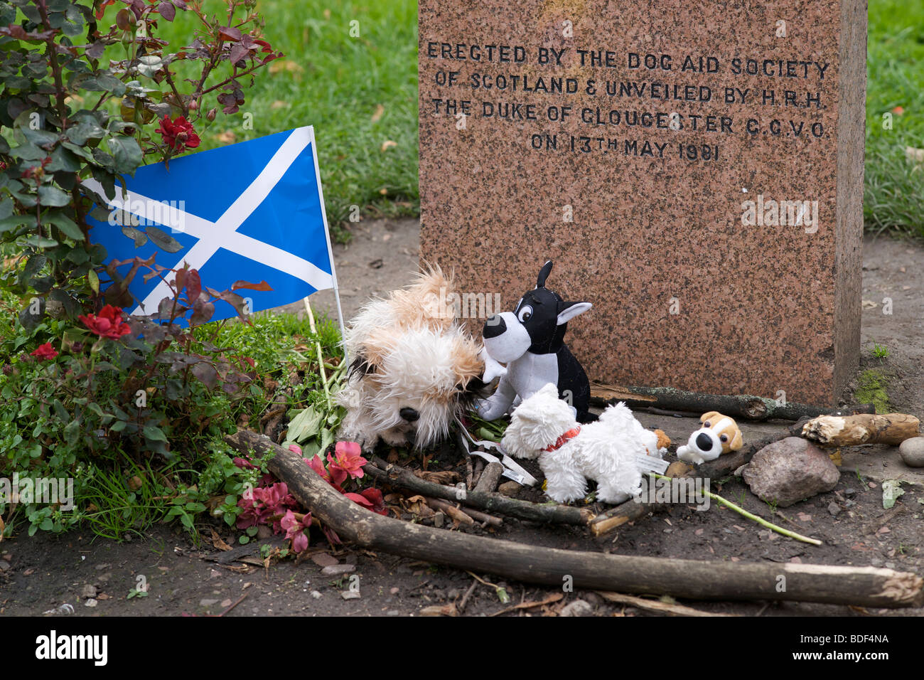Dog Aid Society of Scotland memorial stone to Greyfriars Bobby in Edinburgh. Tributes of toy dogs and a Scottish - Stock Image