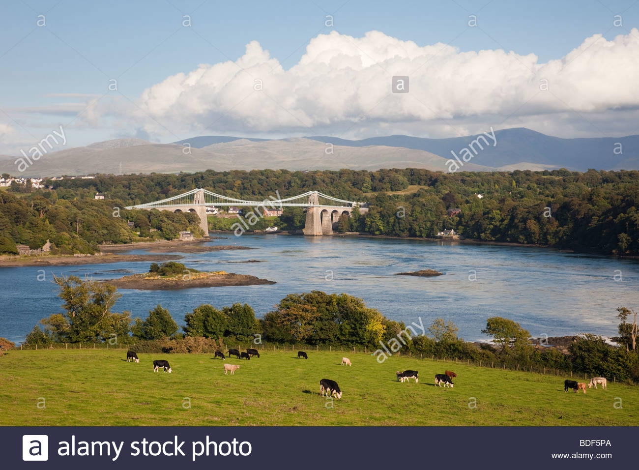 Scenic view of the Menai Strait in summer. Menai Bridge (Porthaethwy) Isle of Anglesey (Ynys Mon) North Wales UK - Stock Image