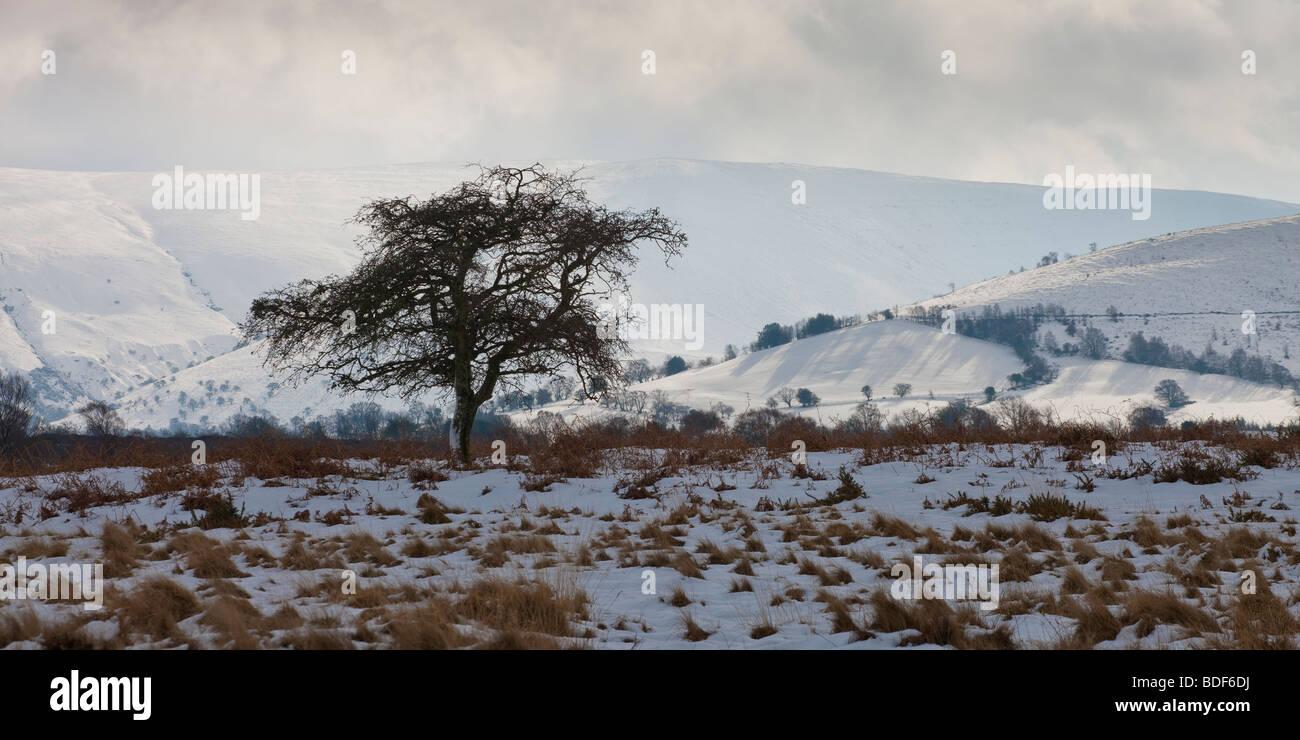 Pen y Fan & Corn Du mountains from Mynydd Illtyd Common Brecon Beacons Powys Wales - Stock Image