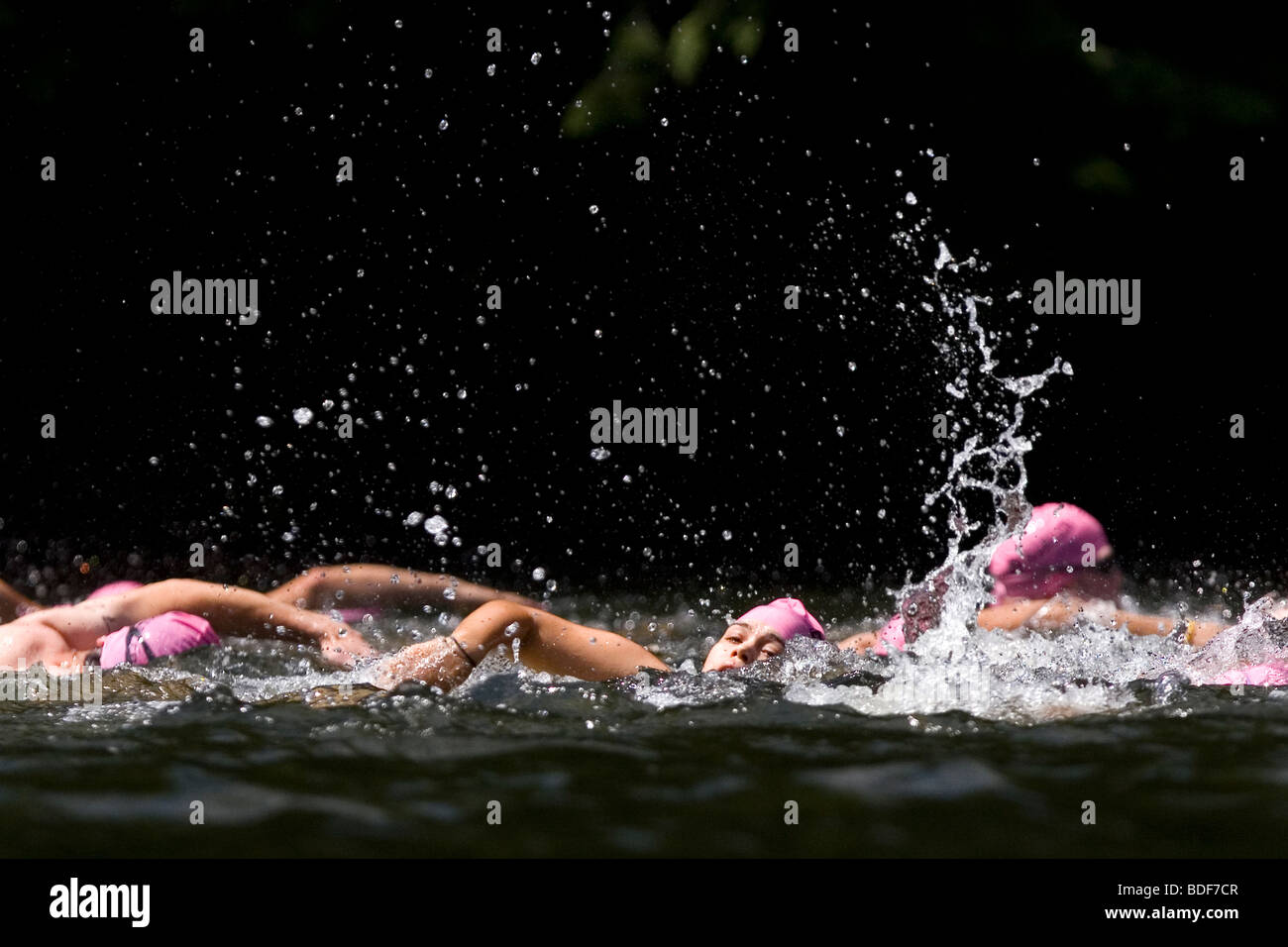 Swimmers compete in an Xterra triathlon. - Stock Image