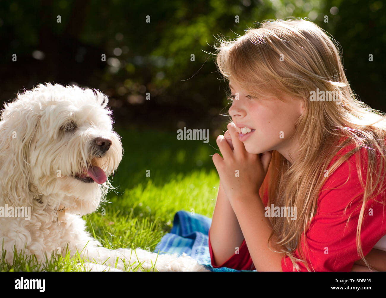 Child and her pet dog in the backyard - Stock Image