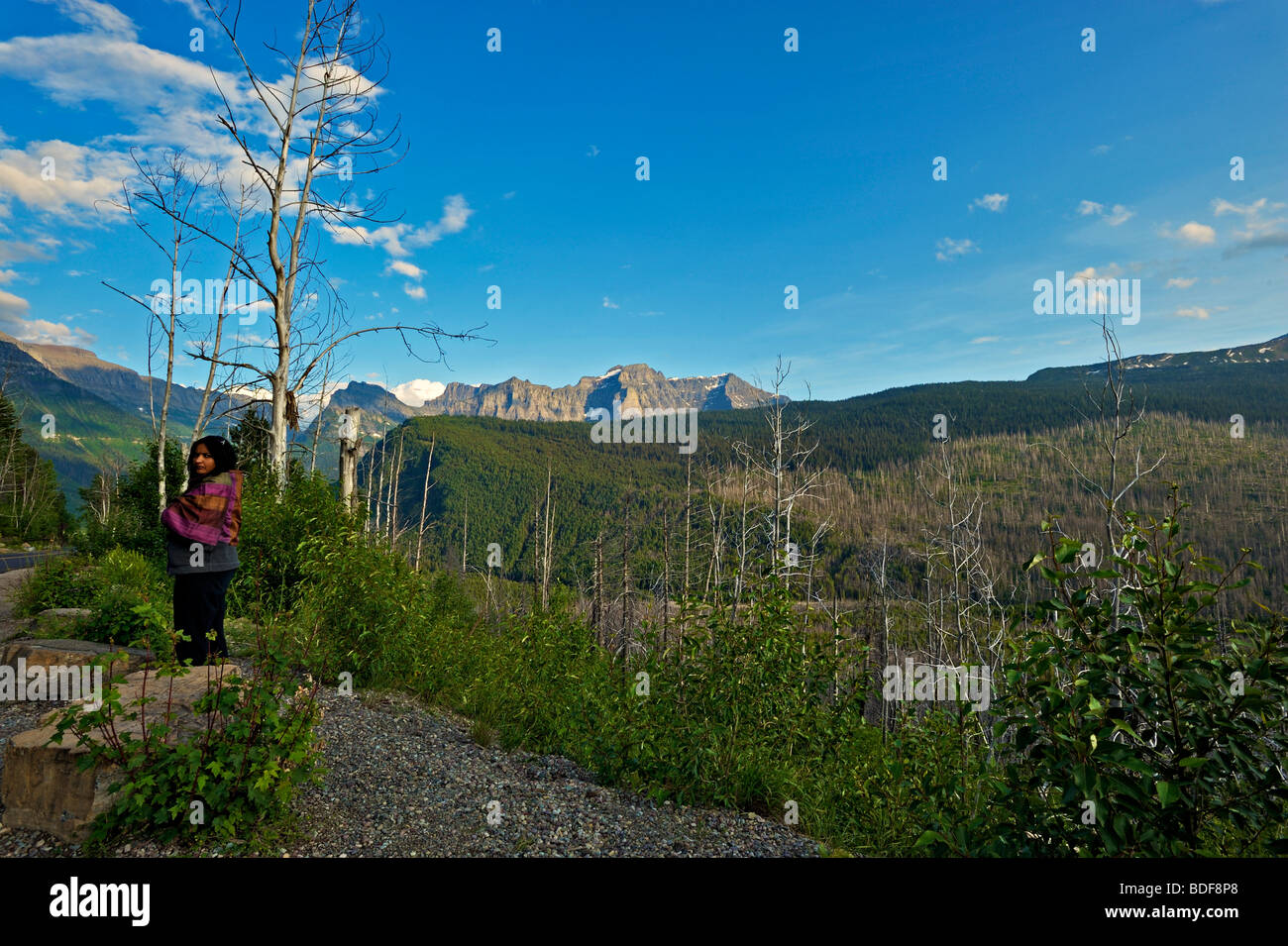 Tourist in Logan pass in the Glacier national park, Montana, USA - Stock Image