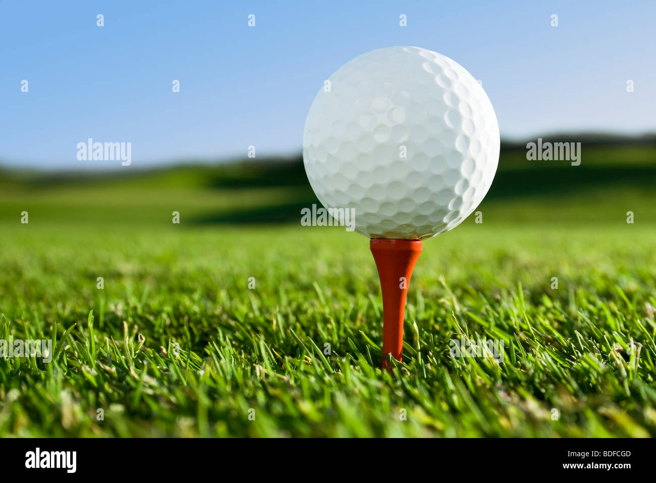 golfball on red tee on golfcourse - Stock Image