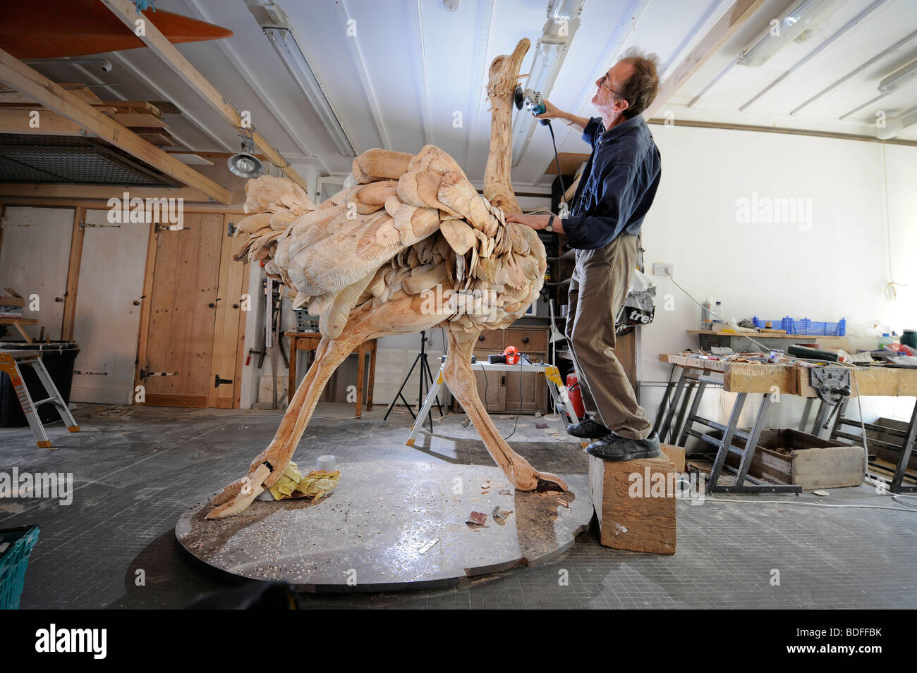 Sculptor Nick Johnson with an Ostrich made from wooden boards carved using angle grinder. Picture by Jim Holden. - Stock Image