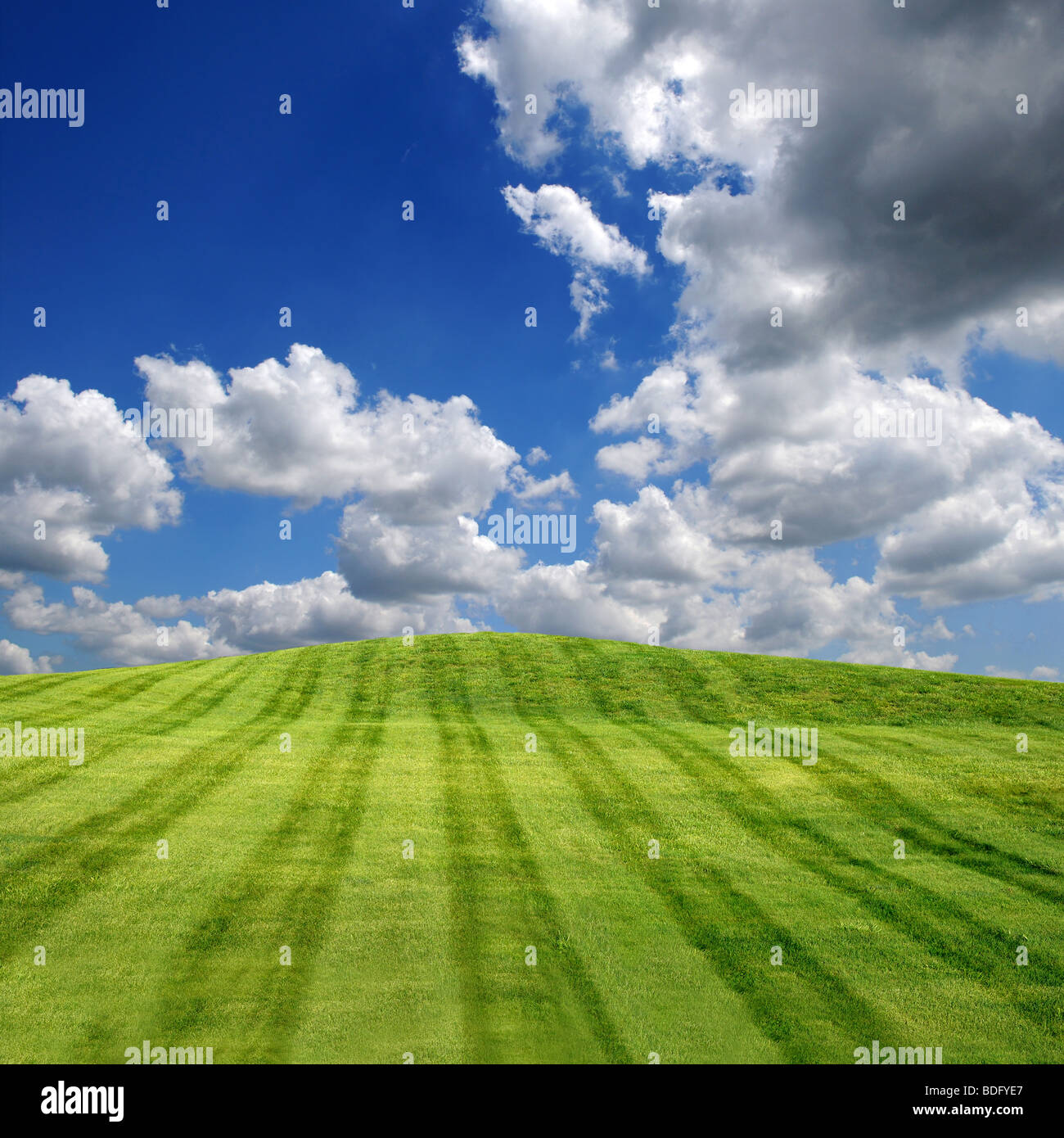 Green field with blue sky and clouds Stock Photo