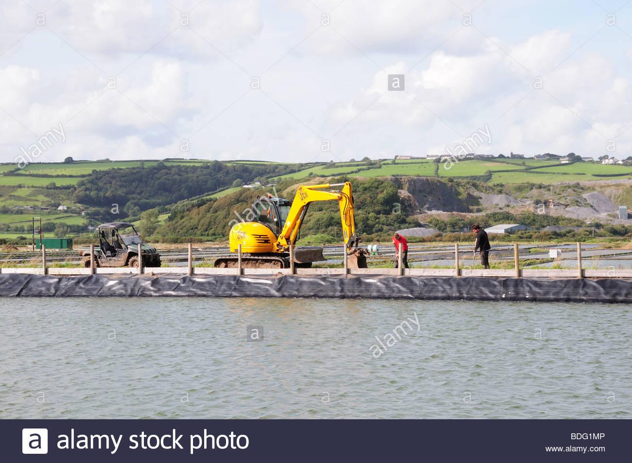 Men using A JCB  at a Lugworm Farm Carmarthenshire Wales Cymru UK GB - Stock Image