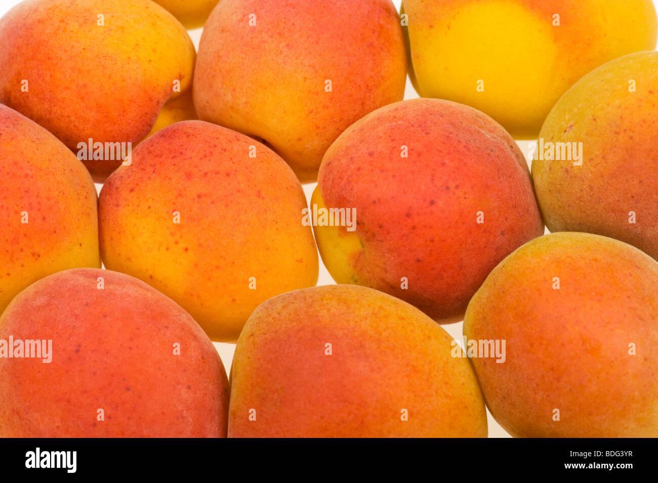 fresh french APRICOT cutout white background studio shot FOOD fruit sweet fresh orange red yellow just pur many - Stock Image