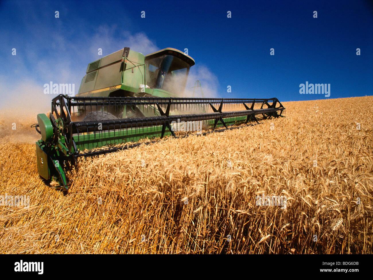 harvesting deutsch