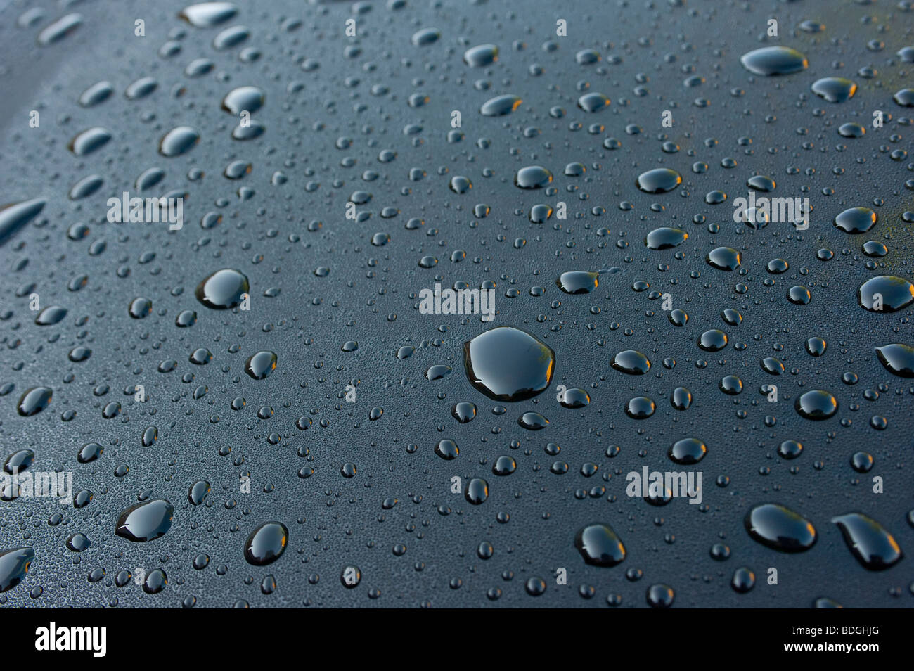 Droplets of water on a tinted car sunroof - Stock Image