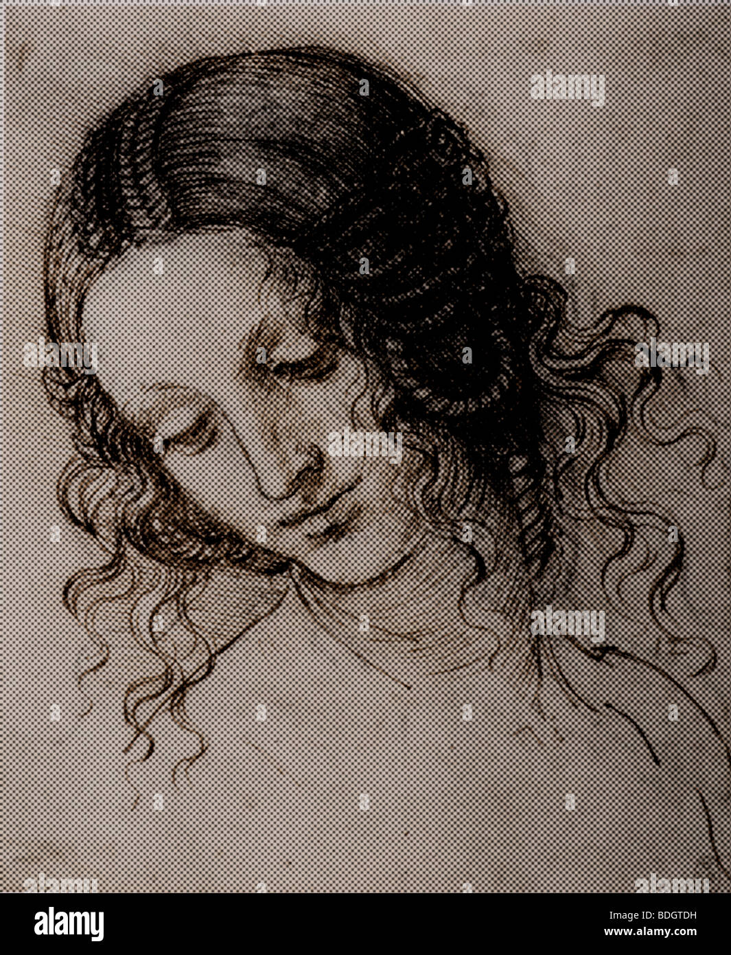 Study of the head of Leda by Leonardo da Vinci halftone pattern - Stock Image