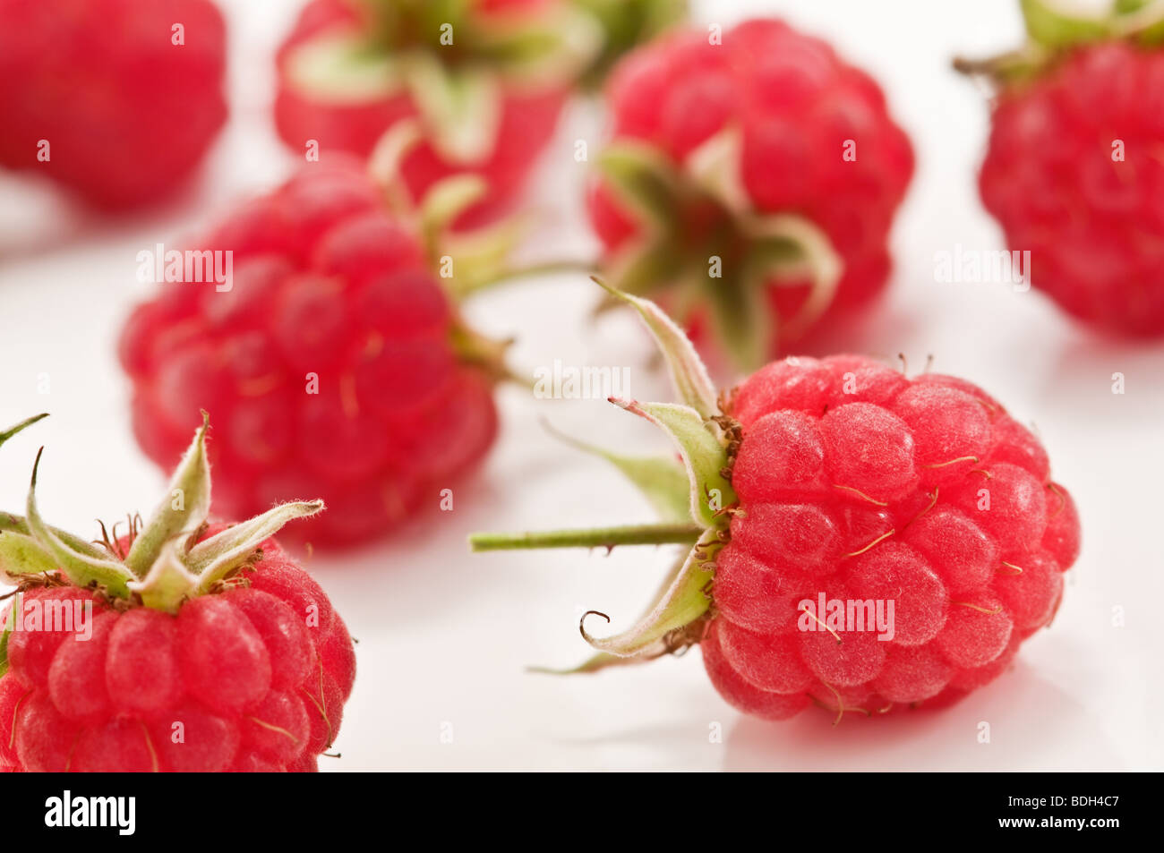 red raspberry closeup - Stock Image