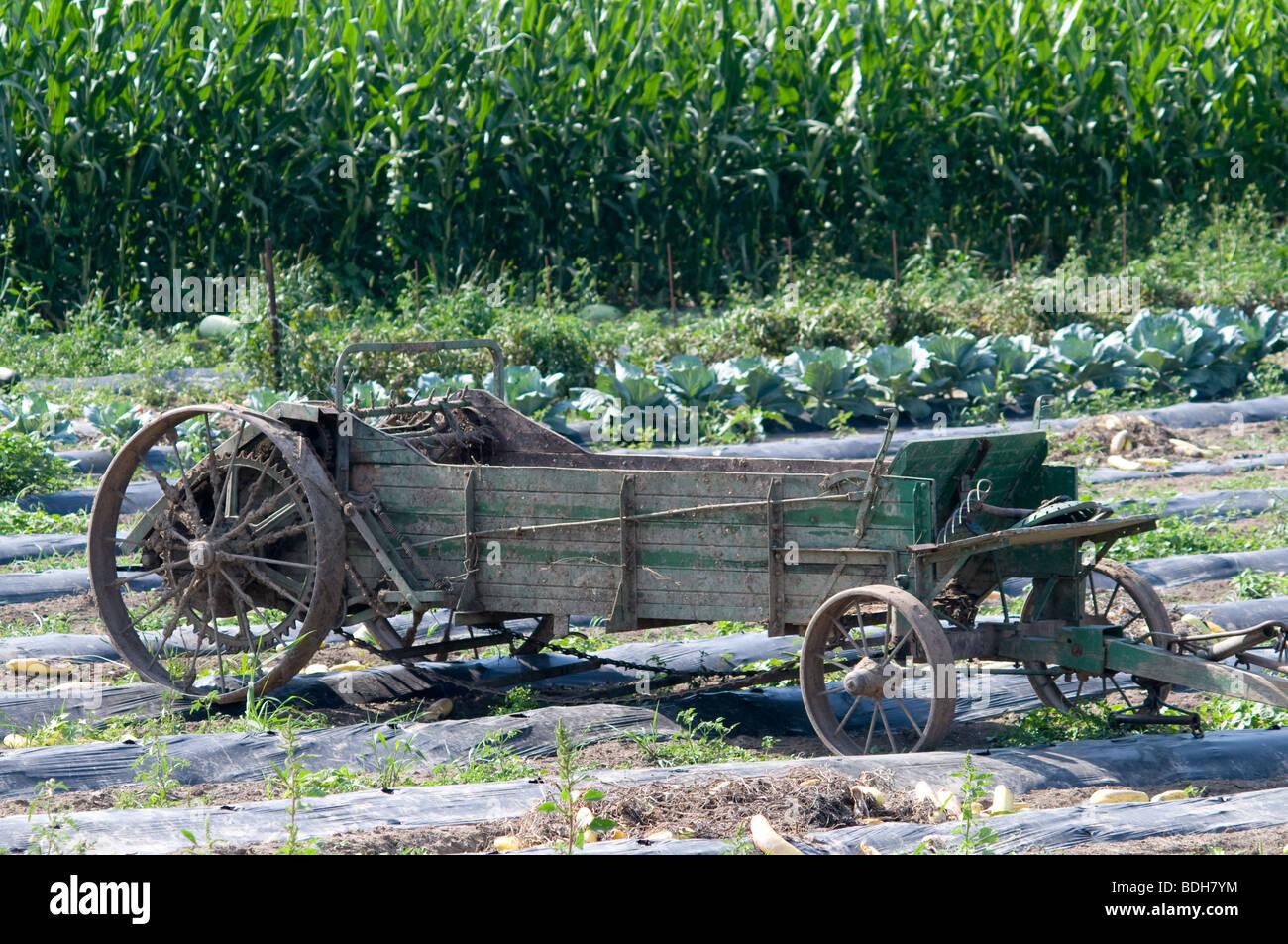 Manure spreader on Amish farm in Ohio - Stock Image