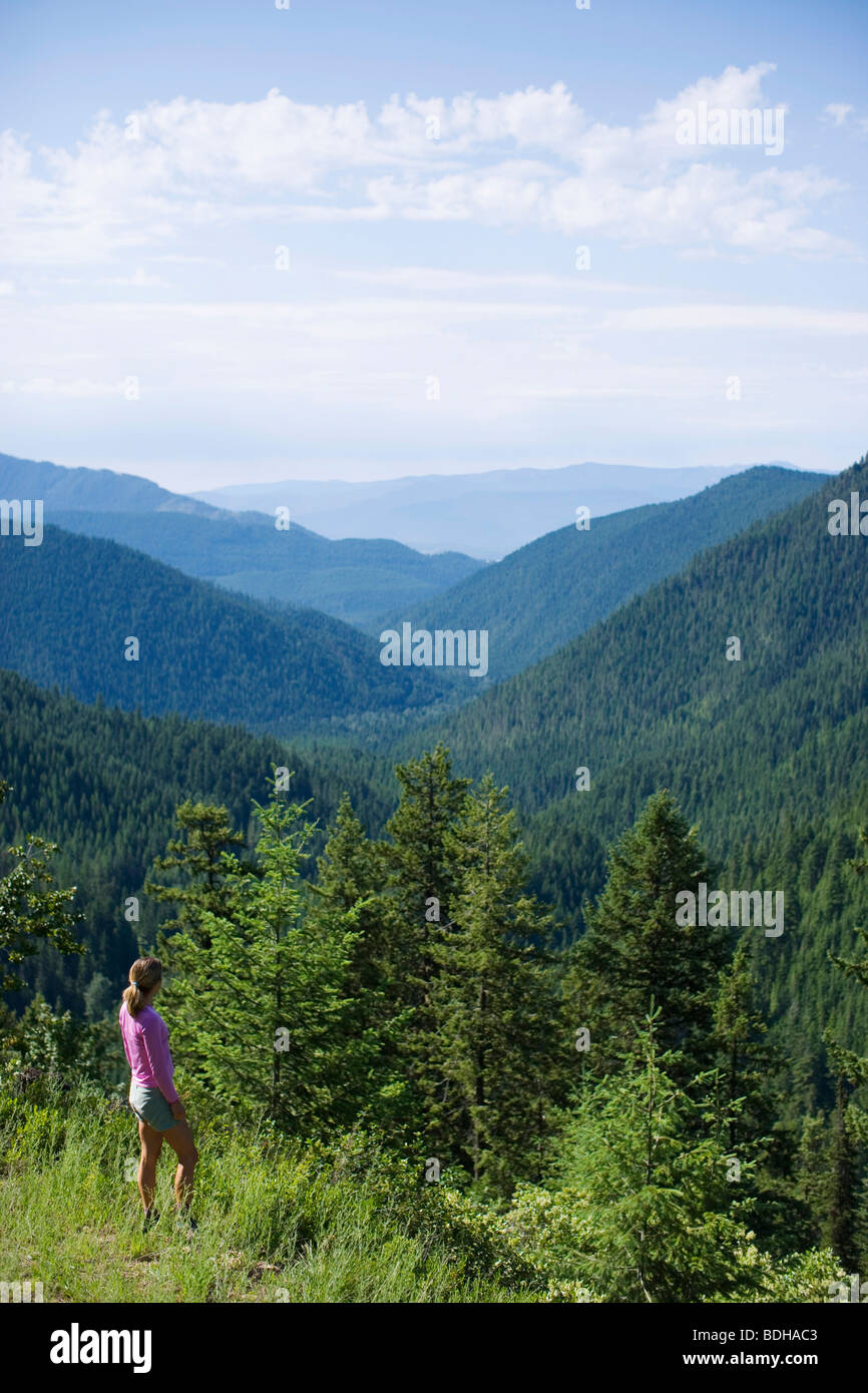 Adult woman looking over pristine forest while hiking. - Stock Image