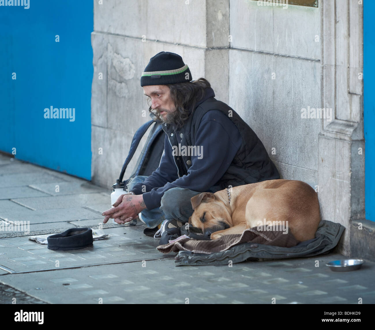 A homeless man begging with his dog,London,England - Stock Image