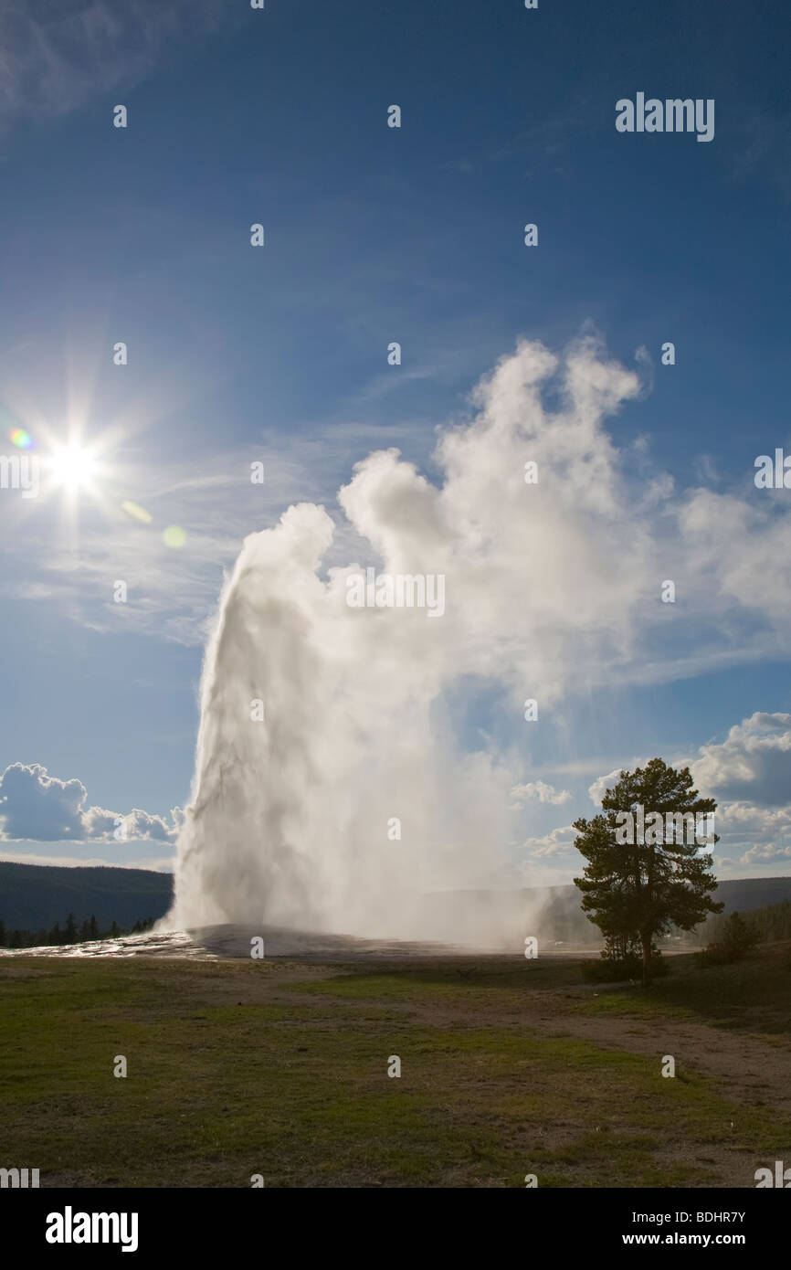 Old Faithful Geyser erupting in Upper Geyser Basin in Yellowstone National Park Wyoming USA Stock Photo