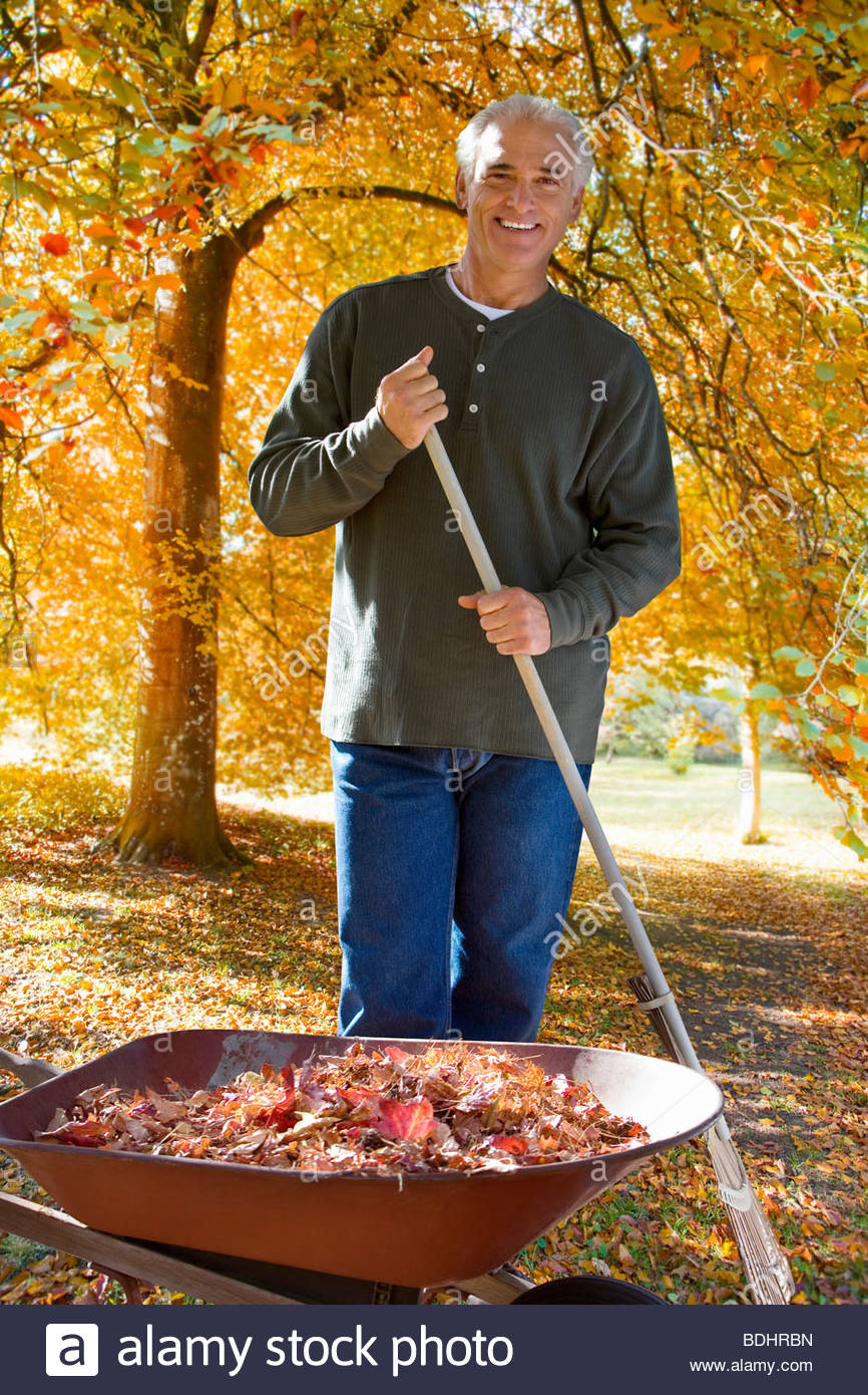 Man doing yard work in autumn - Stock Image