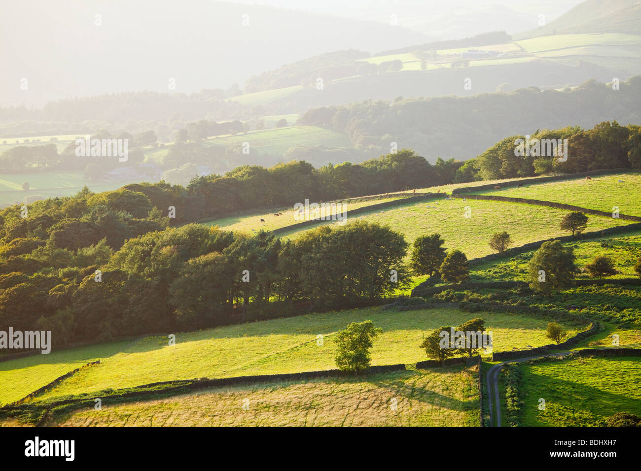 Evening light on the hillsides outside of Hathersage in the Peak District National Park, Derbyshire, England, United - Stock Image