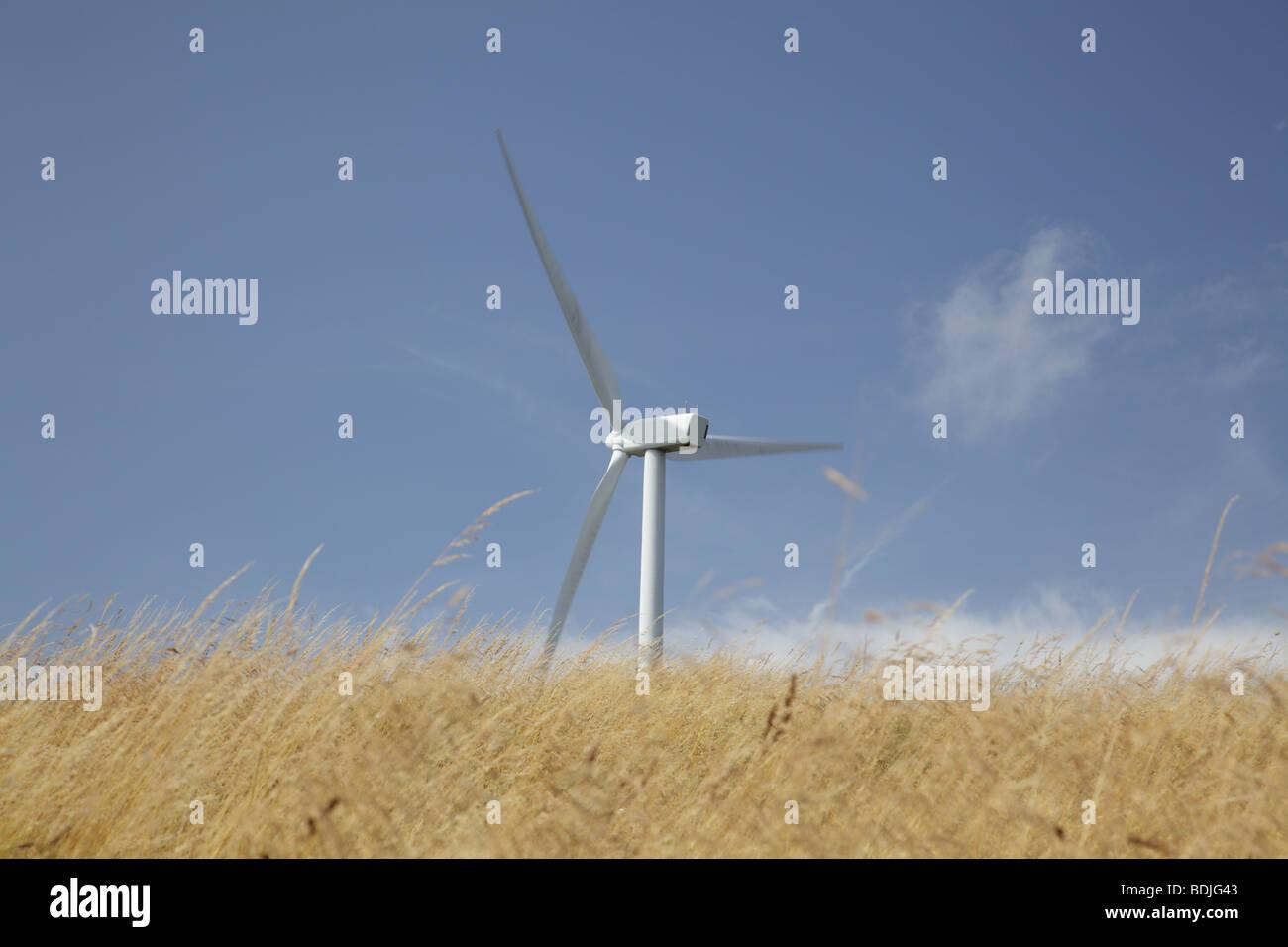 Wind turbine on a Wind Farm in Ayrshire, Scotland, UK - Stock Image