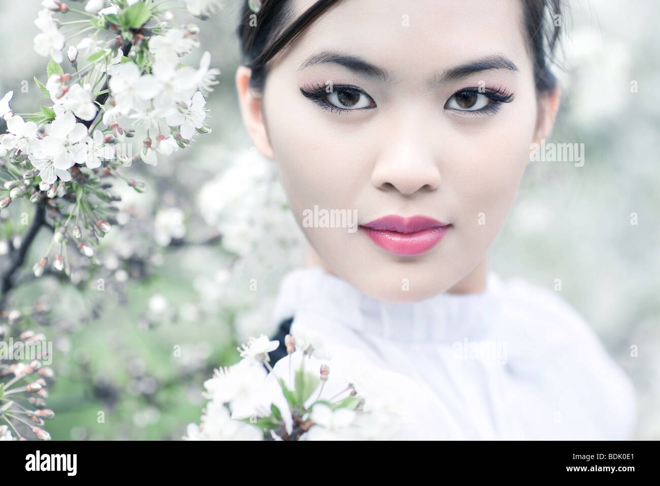 Young woman with cherry flowers. Shallow dof effect. - Stock Image