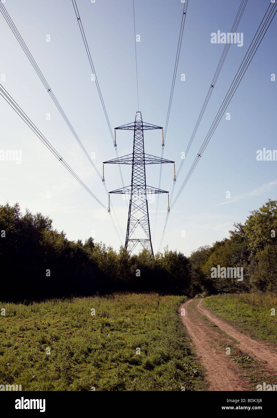 Electricity power supply passing through farm next to farm track - Stock Image