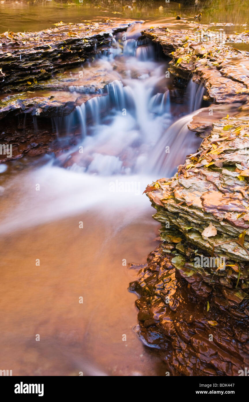 Cascade along the Left Fork of North Creek, Zion National Park, Utah Stock Photo