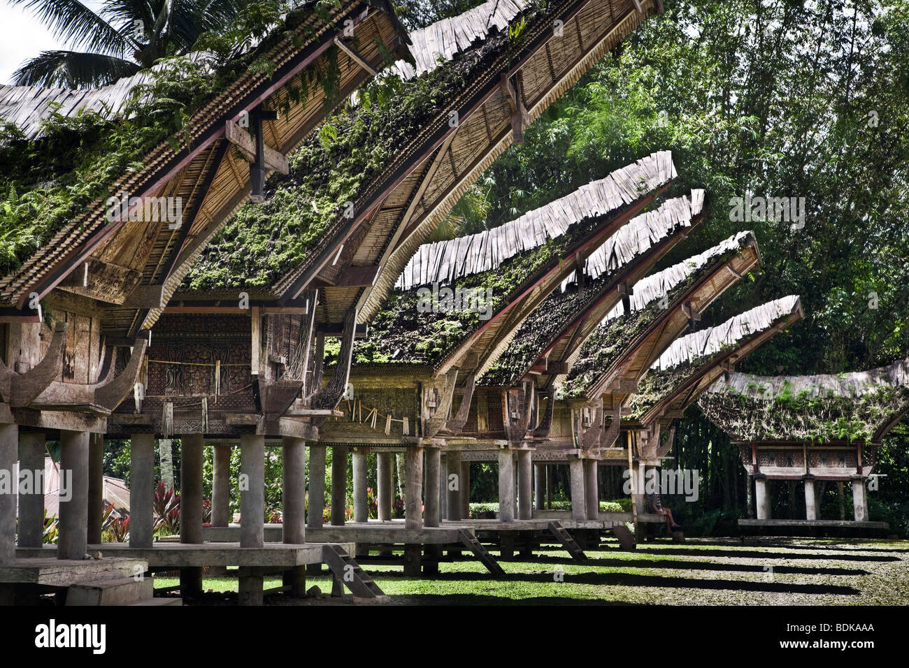 Indonesia, Sulawesi, Tana Toraja area, Kete Kesu' village, traditional Torajan house known as tongkonan - Stock Image