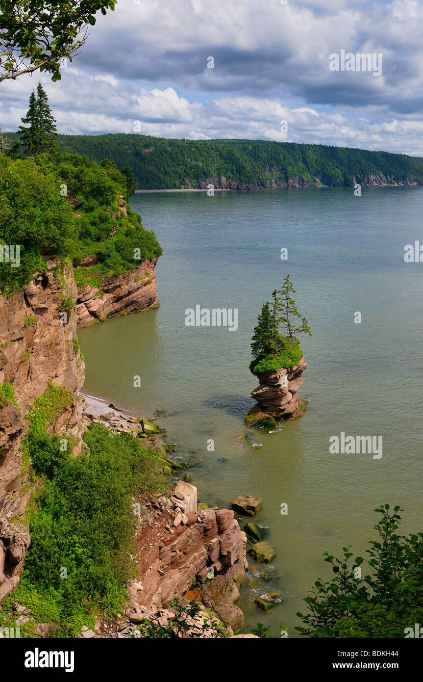 Flowerpot Rock and sea cliff coast at Fownes Head lookout on the Fundy Trail Parkway New Brunswick - Stock Image