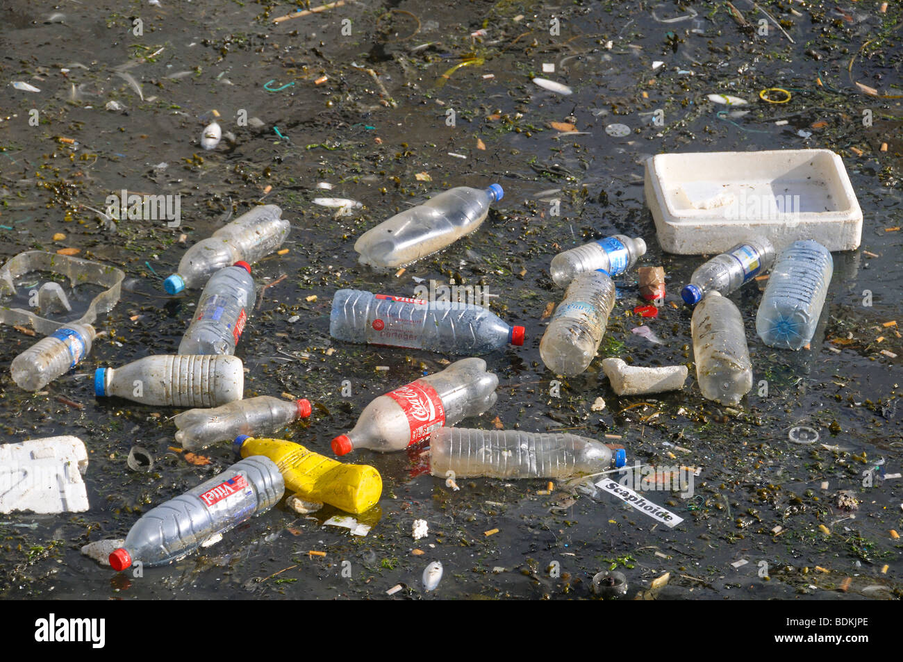 Plastic bottles, polystyrene crates and other detritus floating on water. Stock Photo