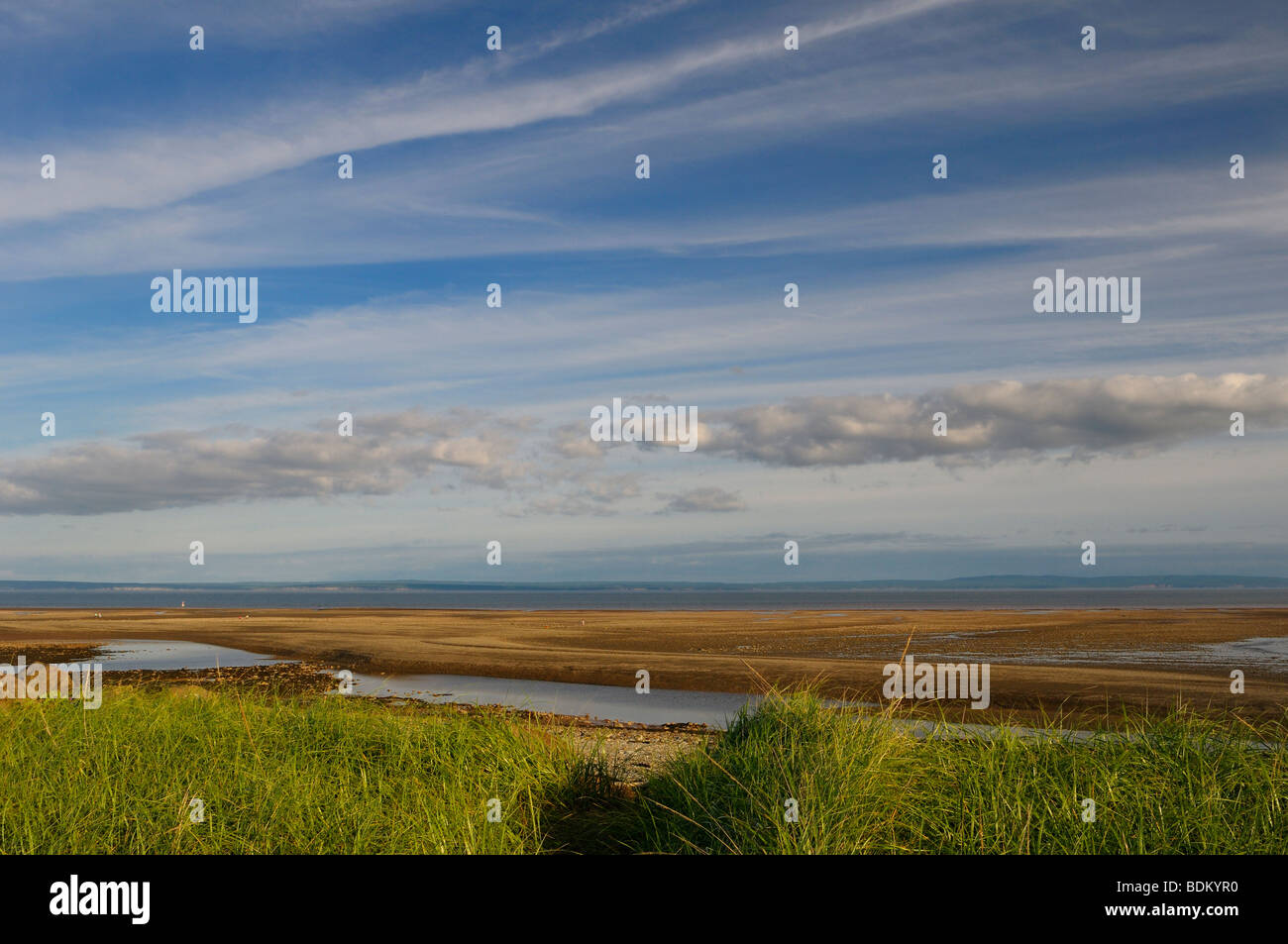 Bay of Fundy ocean floor at low tide from the shores of Alma New Brunswick Canada - Stock Image