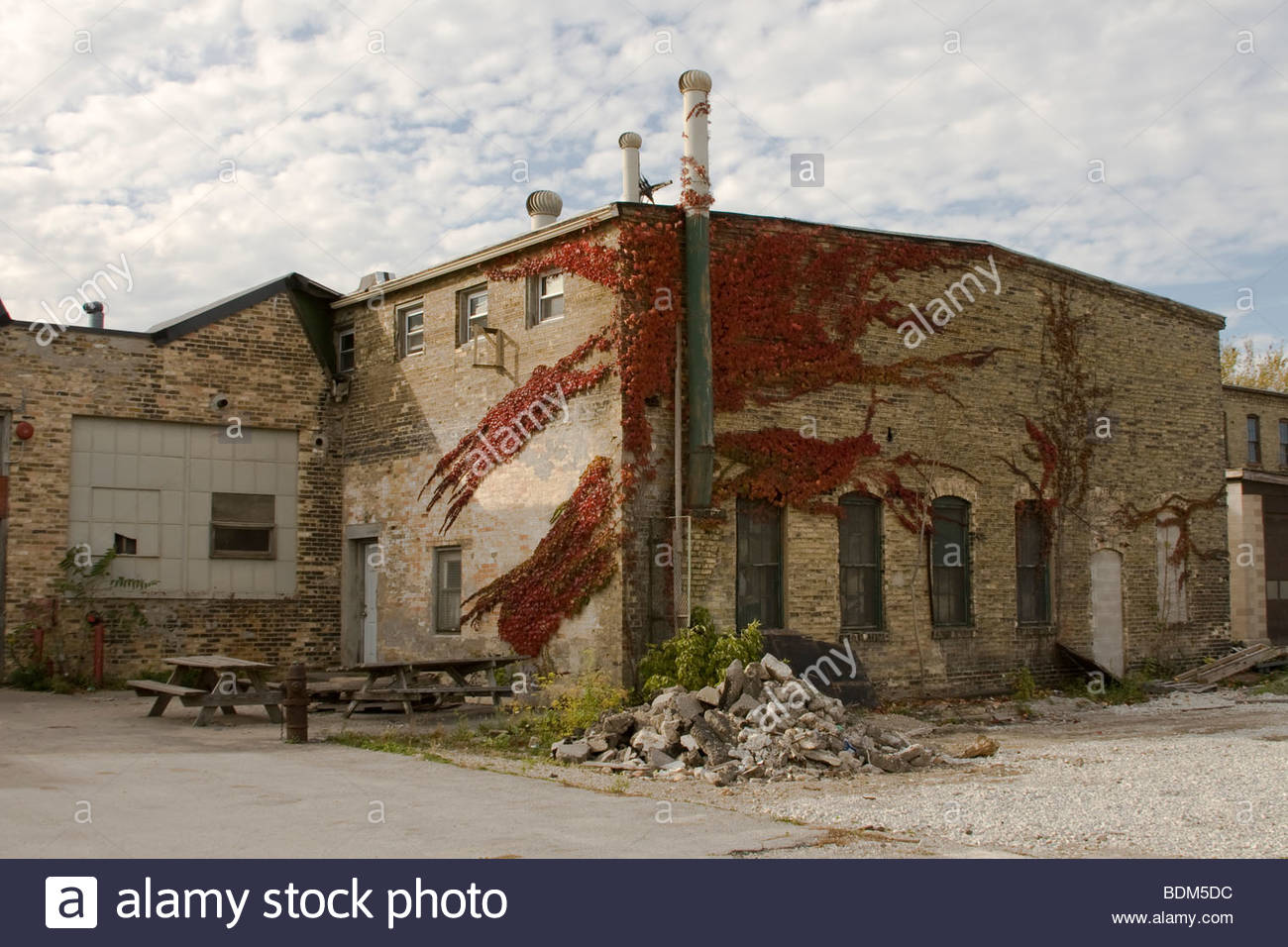 old, building, abandon, ivy, cool, brick, fall, autumn, - Stock Image