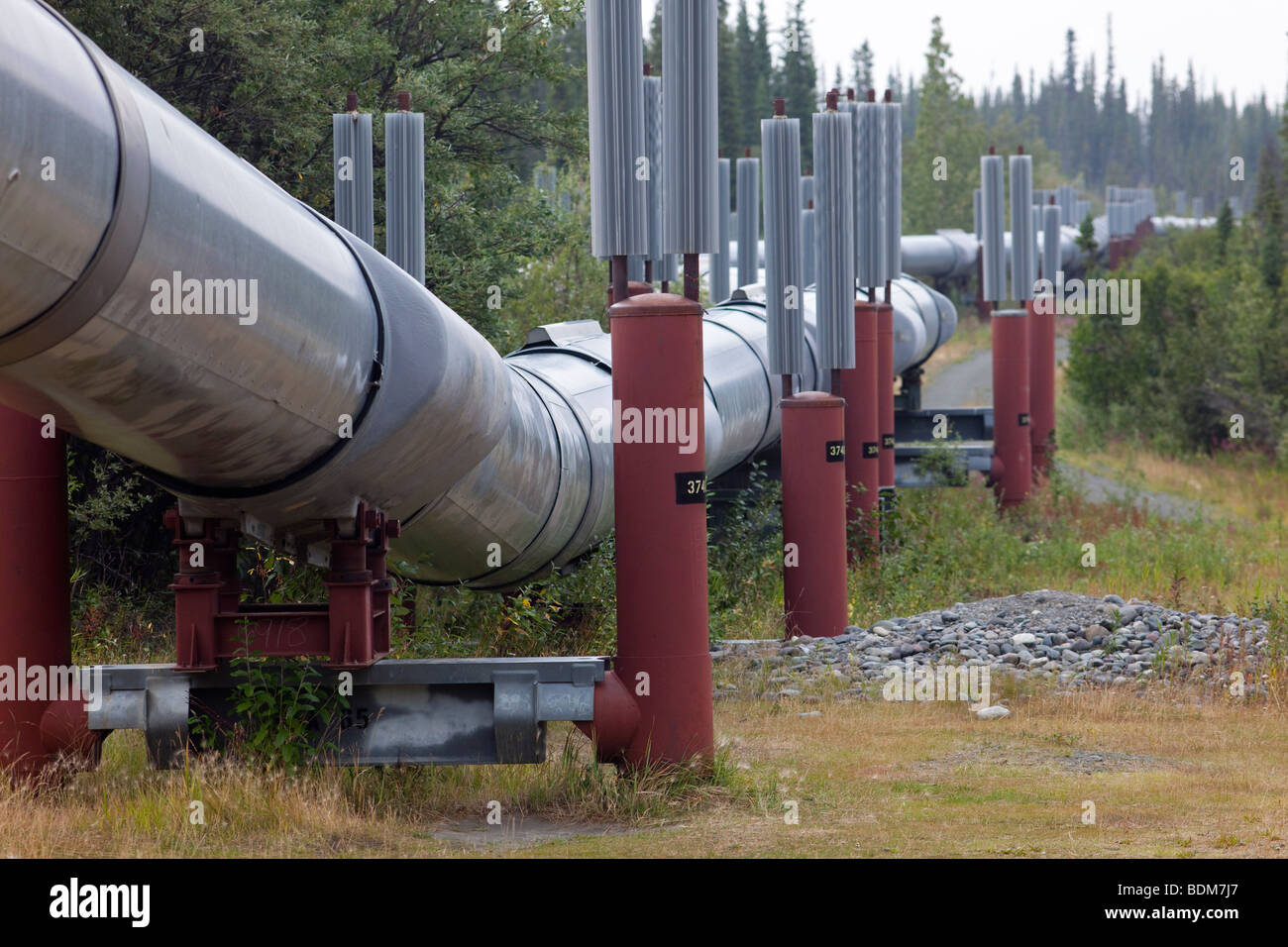 Copper Center, Alaska - The Trans-Alaska Pipeline, which carries oil 800 miles from Prudhoe Bay to Valdez. - Stock Image
