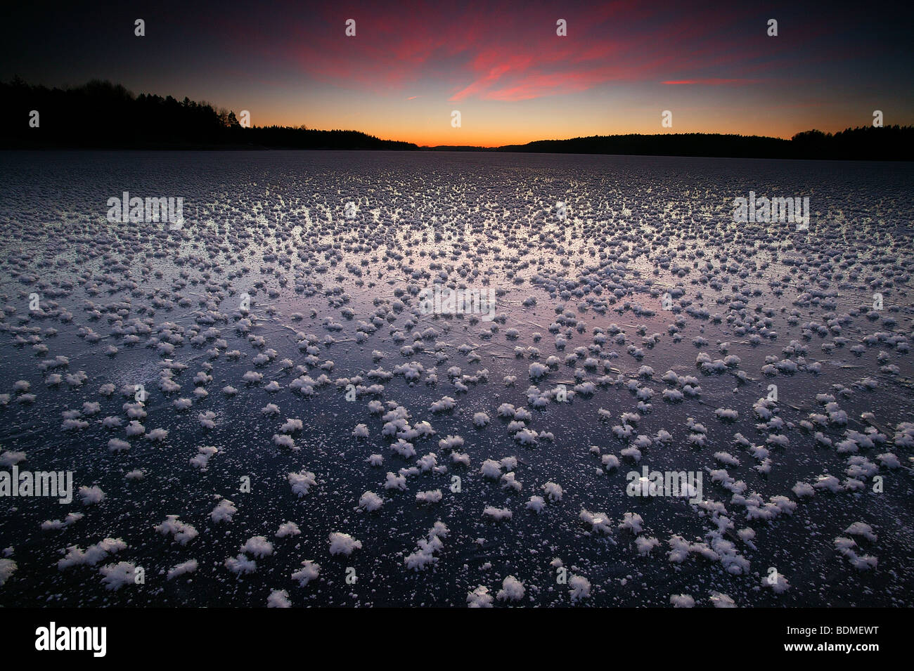 Frost roses on the ice on a winter evening at Vanemfjorden in the lake Vansjø in Østfold, Norway. - Stock Image