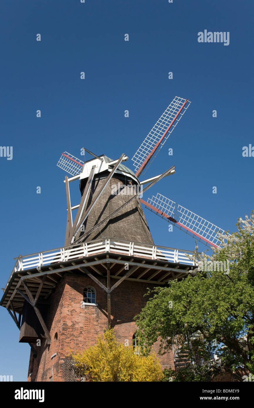 Aurora Mill in Borstel, Dutch mill with gallery and brick substructure, Altes Land region, Lower Elbe, Lower Saxony, - Stock Image