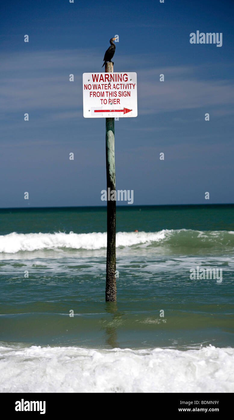 A sign on which a cormorant sits prohibits all water activities from this point on, Daytona Beach, Florida, USA, - Stock Image